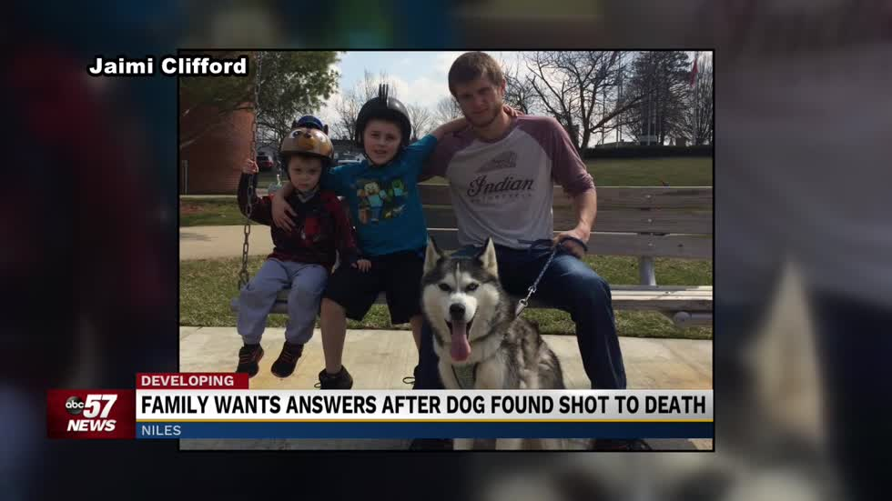 Family wants justice after dog shot to death